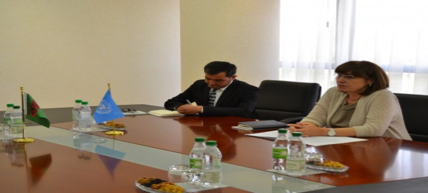 Meeting at the Ministry of Foreign Affairs with the UN Resident Coordinator in Turkmenistan